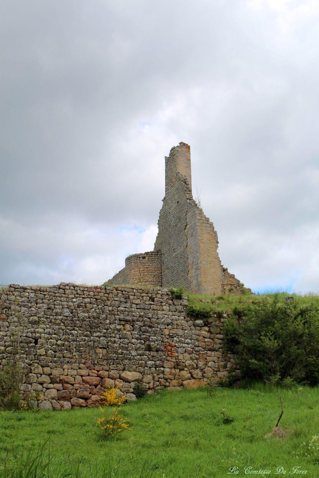 Château de Viverols (63840)