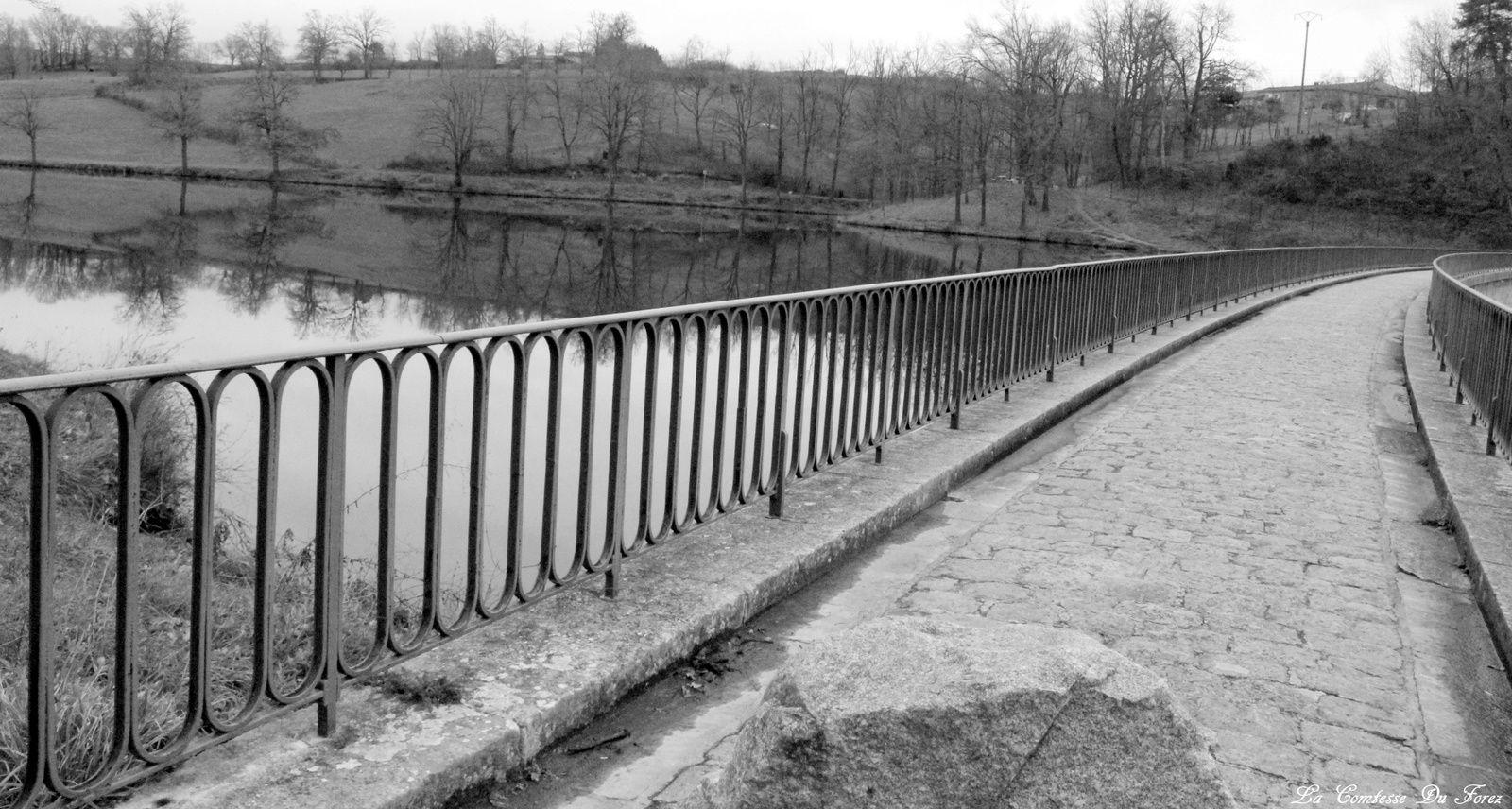 Barage du Vérut de Saint-Galmier (42, Loire)