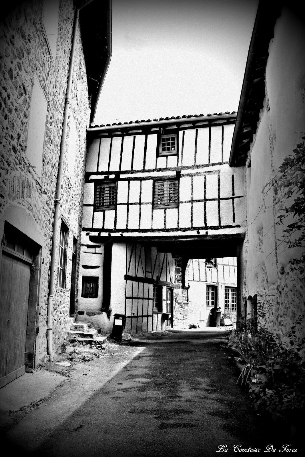Village de Néronde  (42154, Loire)