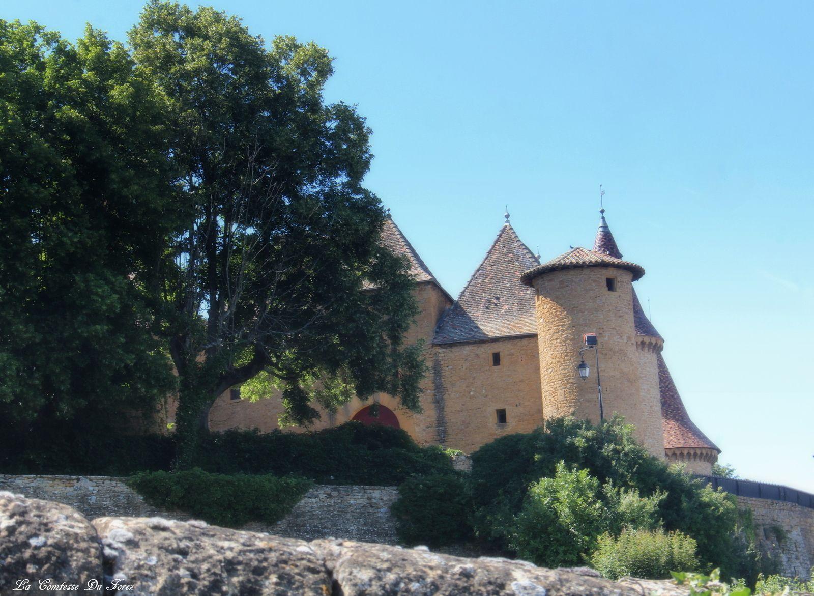 Château de Jarnioux (69640 Jarnioux - Beaujolais)