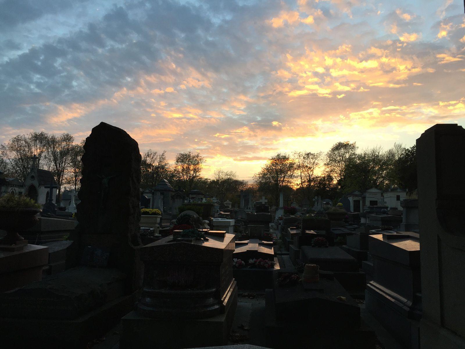 quelque part, qu'importe : cimetière du Père Lachaise 1/11/2014