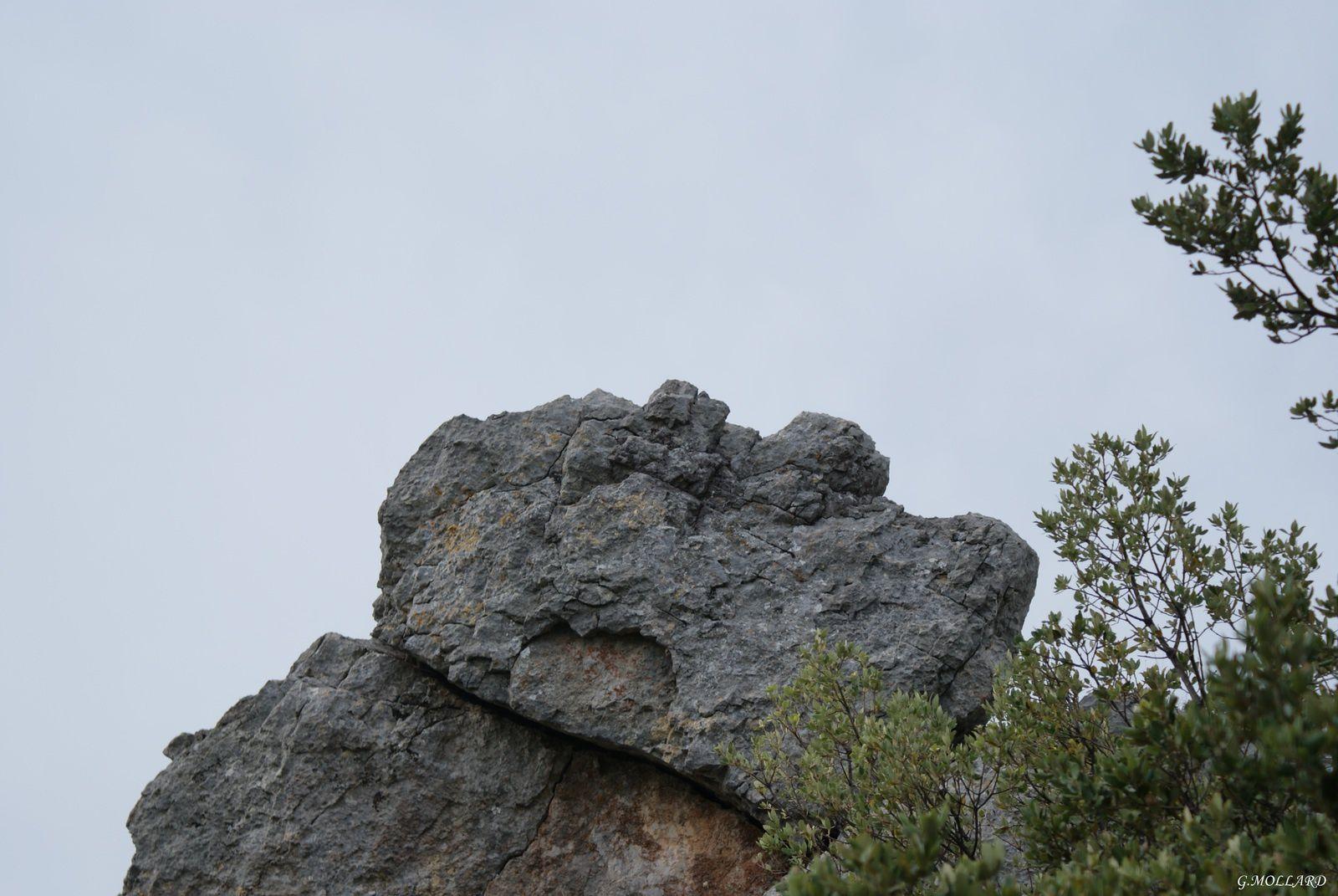une tête de pierre