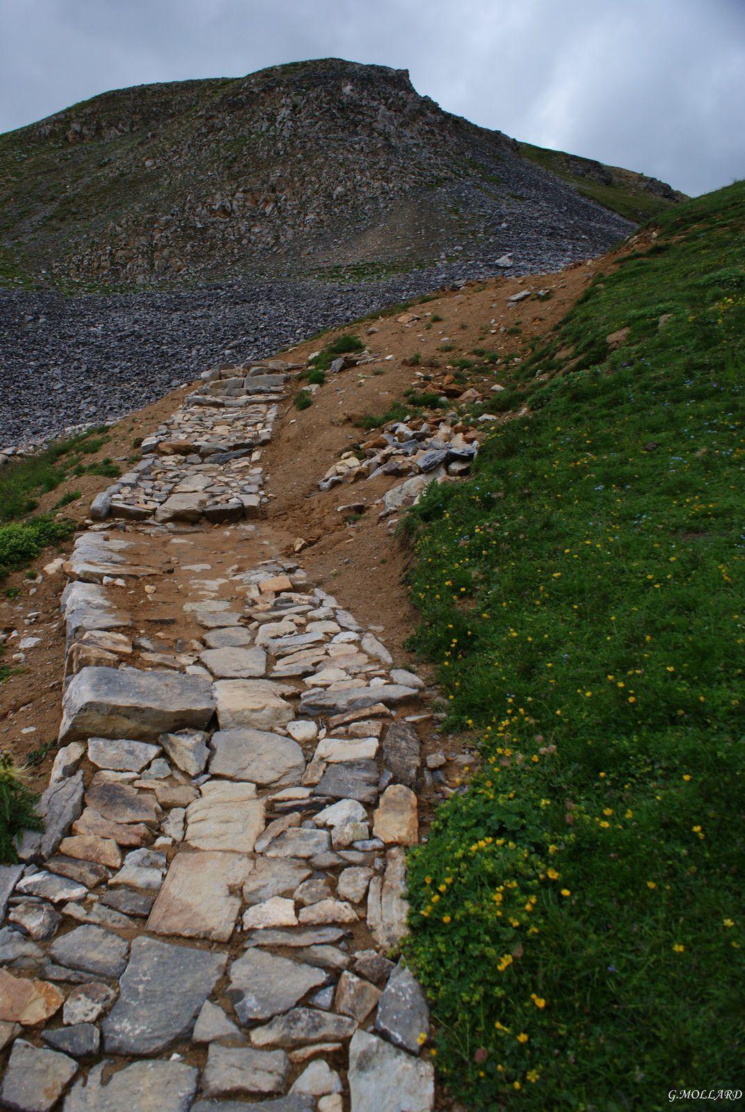 superbe travail pour ce chemin de pierre.