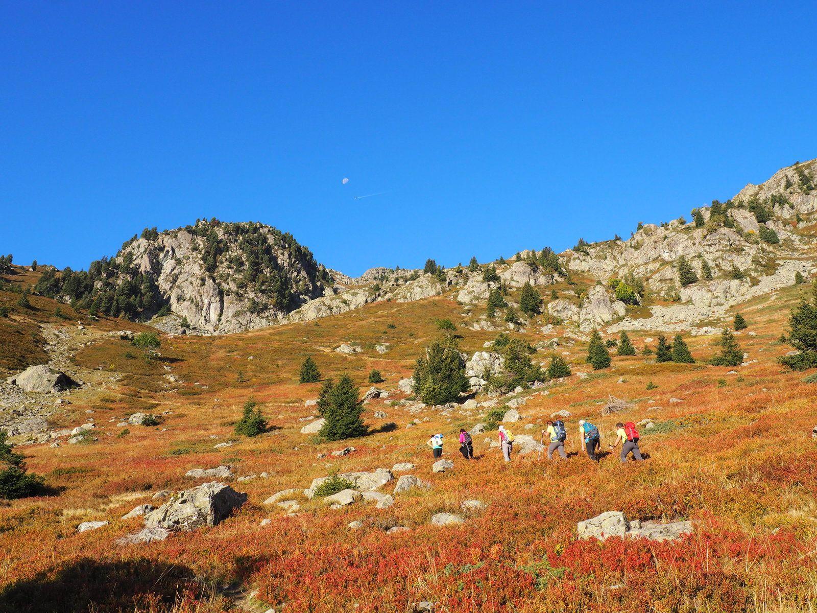 jolie couleur d automne avec les myrtilles