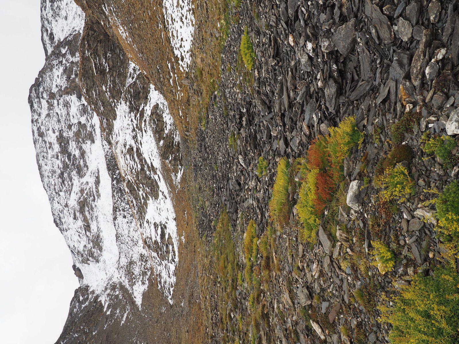 Le col et la pointe de Lanserlia, (2774m et 2909 m) Termignon,Bellecombe refuge du plan du lac.