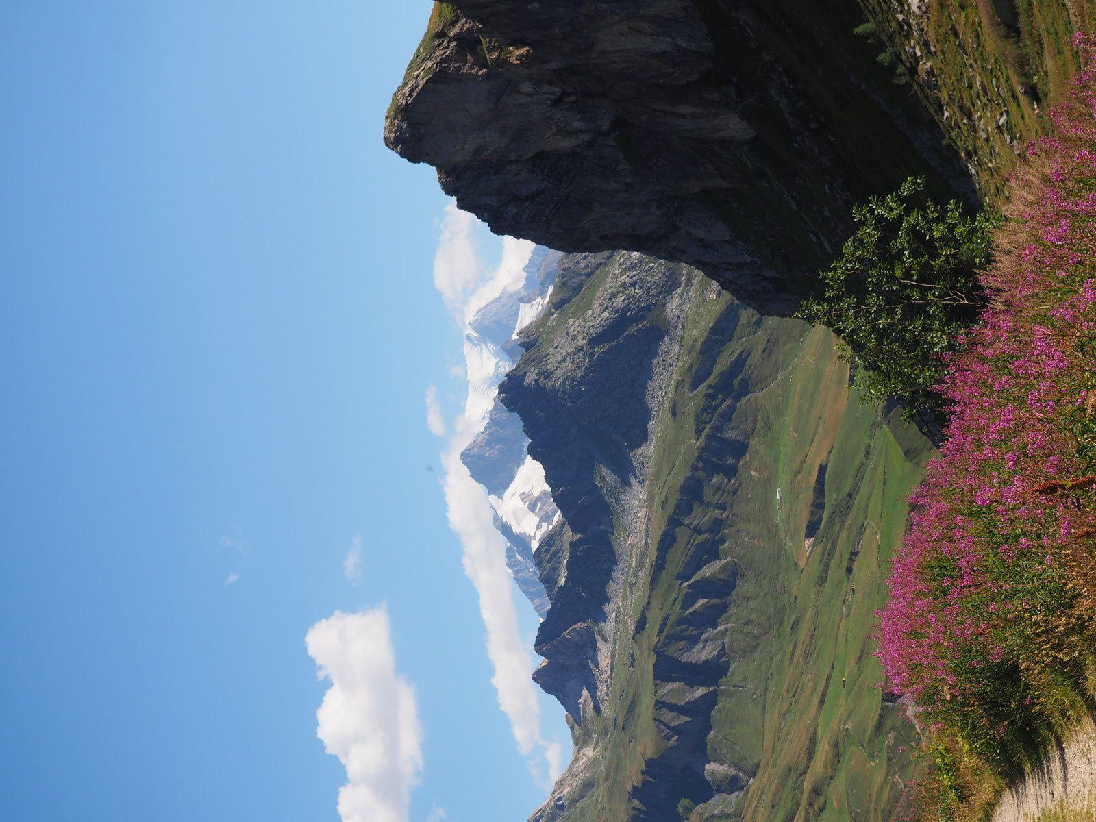 """sous l'oeil du géant """"le mont Blanc"""""""