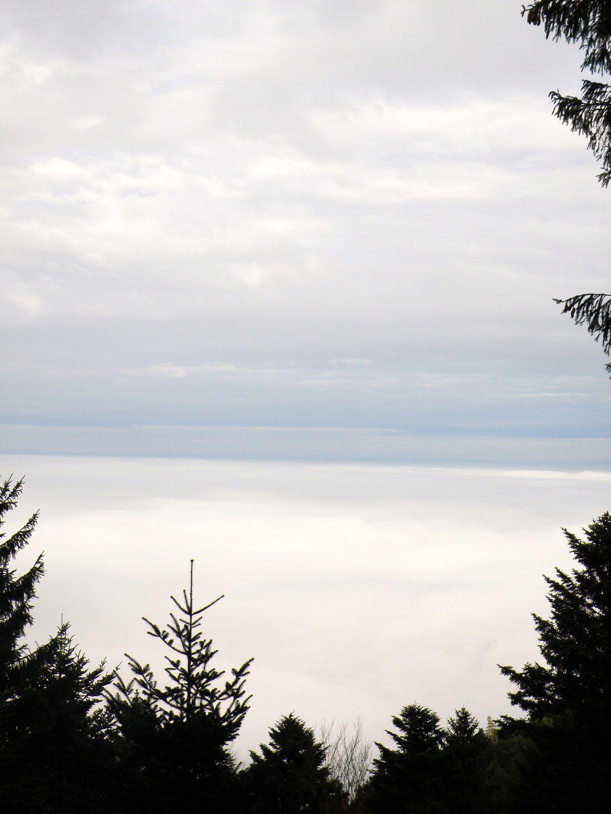Mercredi dans la brume du mont Saint Odile