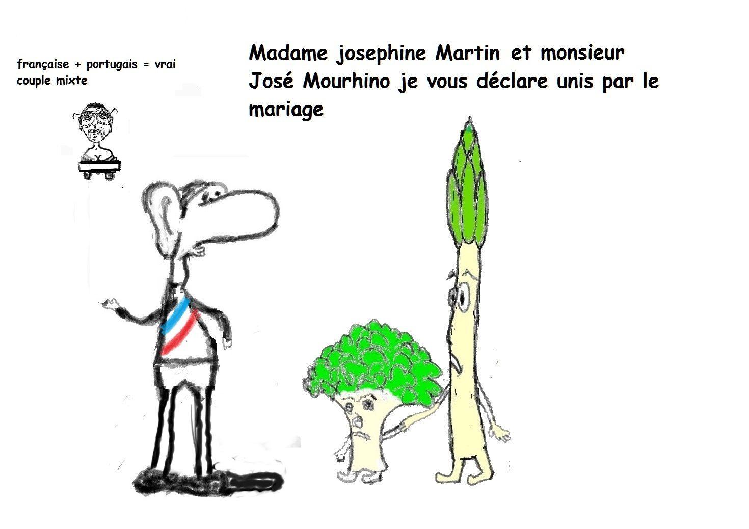 Les 6 cas de mixité d' après Neyrand Gérard et M'Sili Marine.