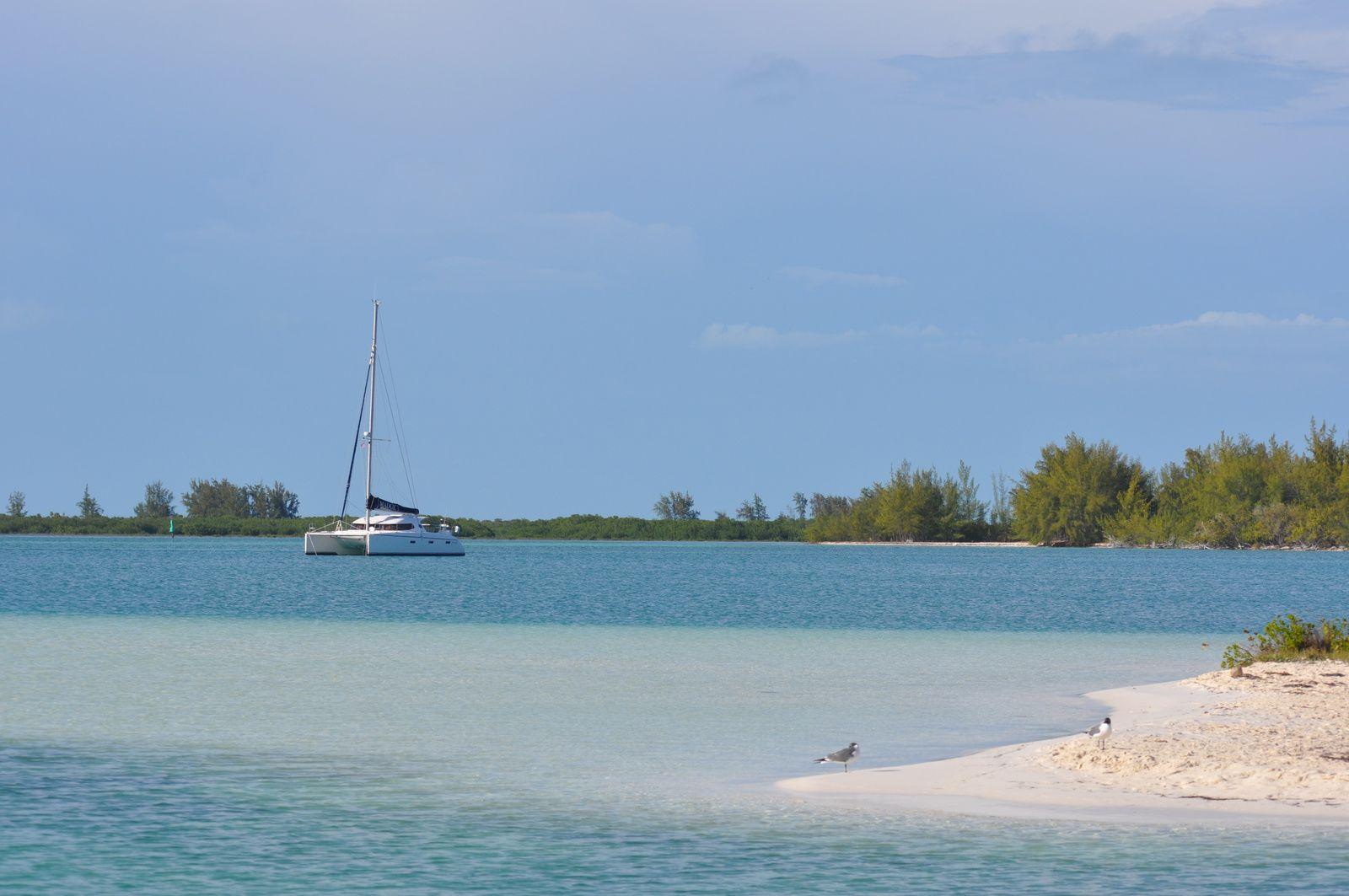 Cayo Largo : incontournable !