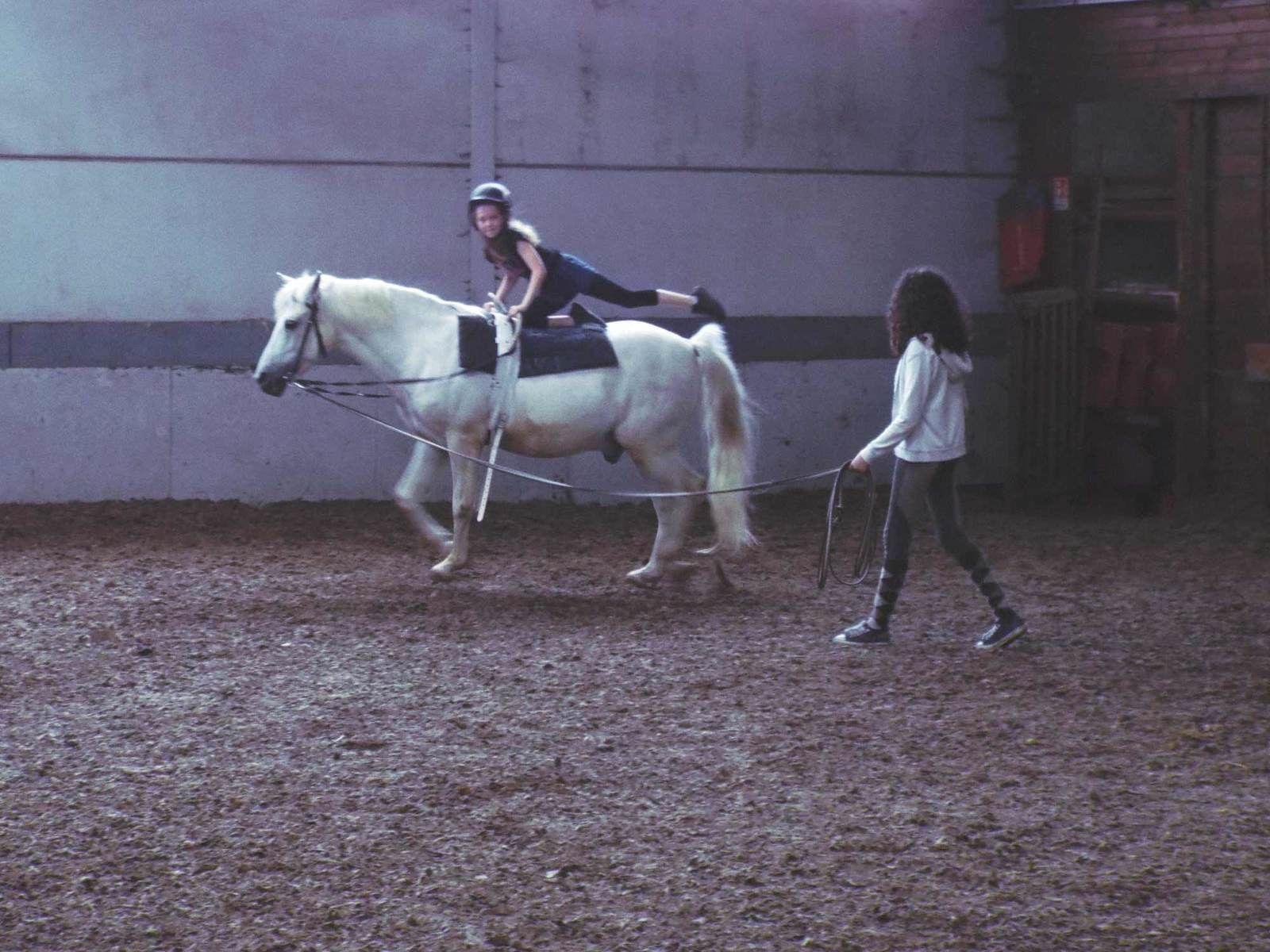 STAGE - Initiation à l'équitation - 9/11 ans