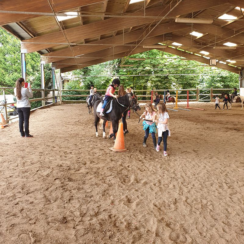 Équitation comines 5/6 ans du 15 au 19 juillet 2019