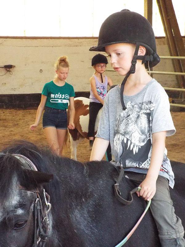 STAGE Equitation Comines - 22 au 26/07