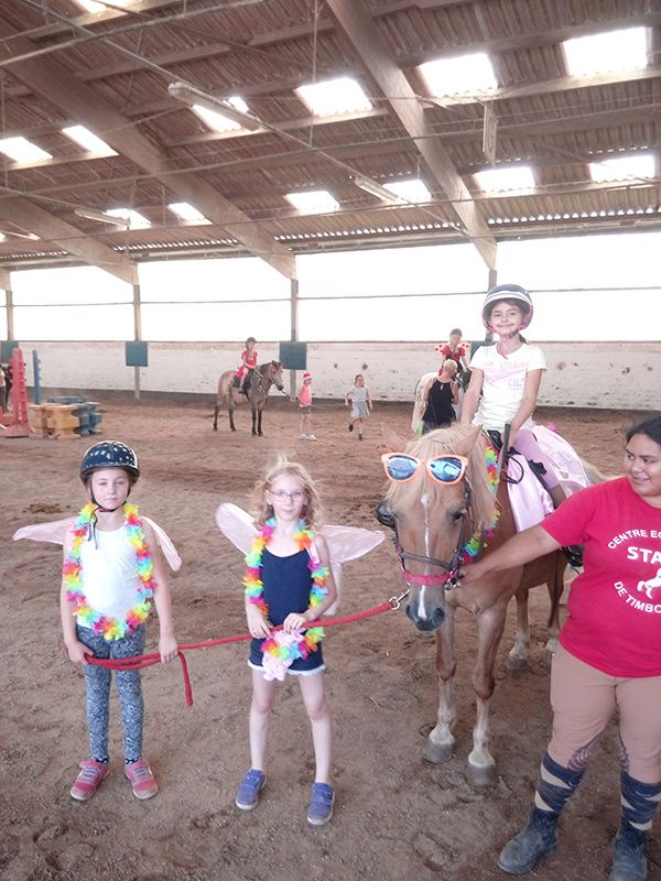 STAGE Equitation Comines- 29/07 au 02/08