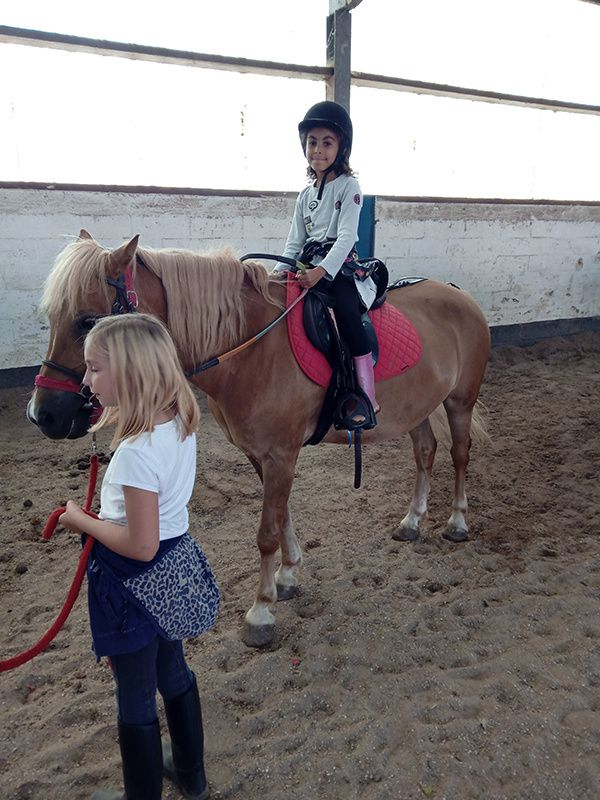 STAGE - Equitation Comines - du 05 au 09/08
