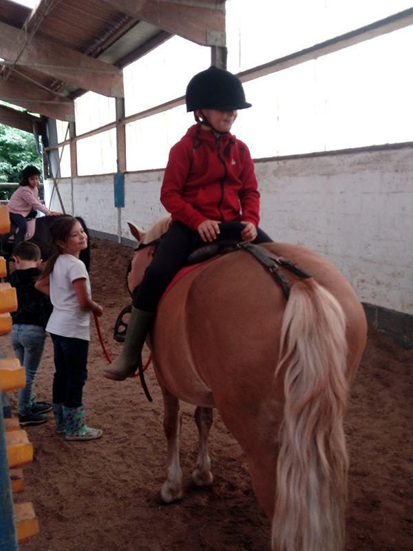 STAGE- Equitation Comines - 29 au 31/07