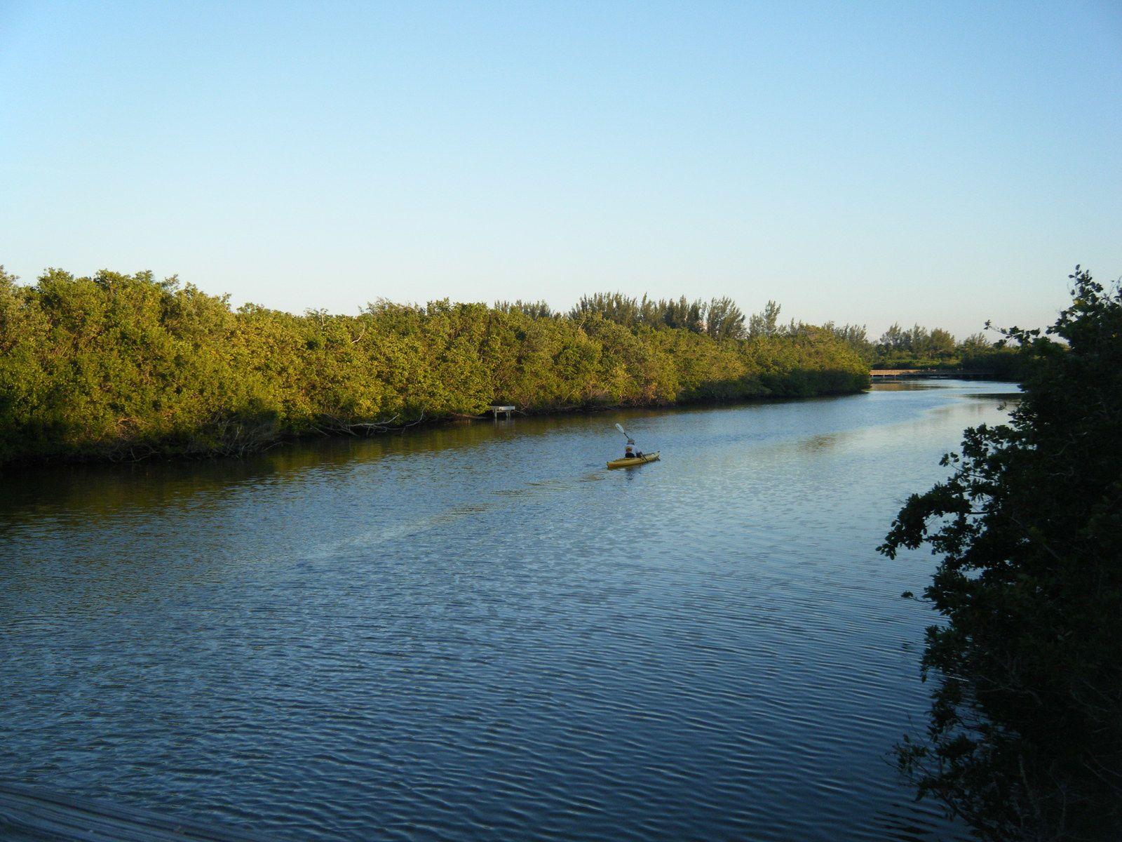 l'eau transparente, les coquillages, la mangrove et les canaux (pont passant au dessus pour atteinde la plage