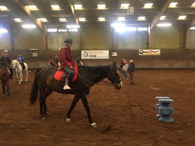 Sorties équitation pour les 6e