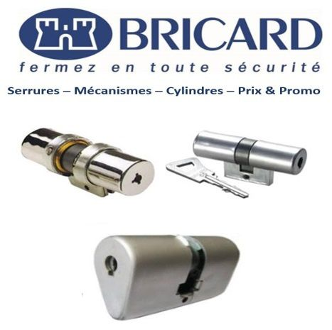Cylindre_Bricard