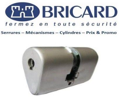 Cylindre_Ovoide_Bricard_Meudon