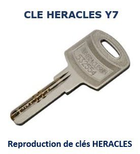 Cle_Y7_HERACLES_reproduction