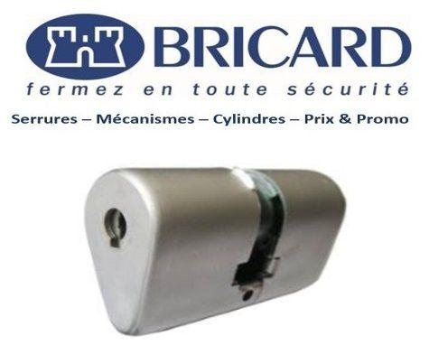 Bricard_Ovoide_Marly_le_Roi_78160