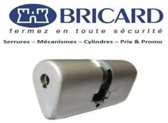 Bricard_Ovoide_Issy_les_Moulineaux