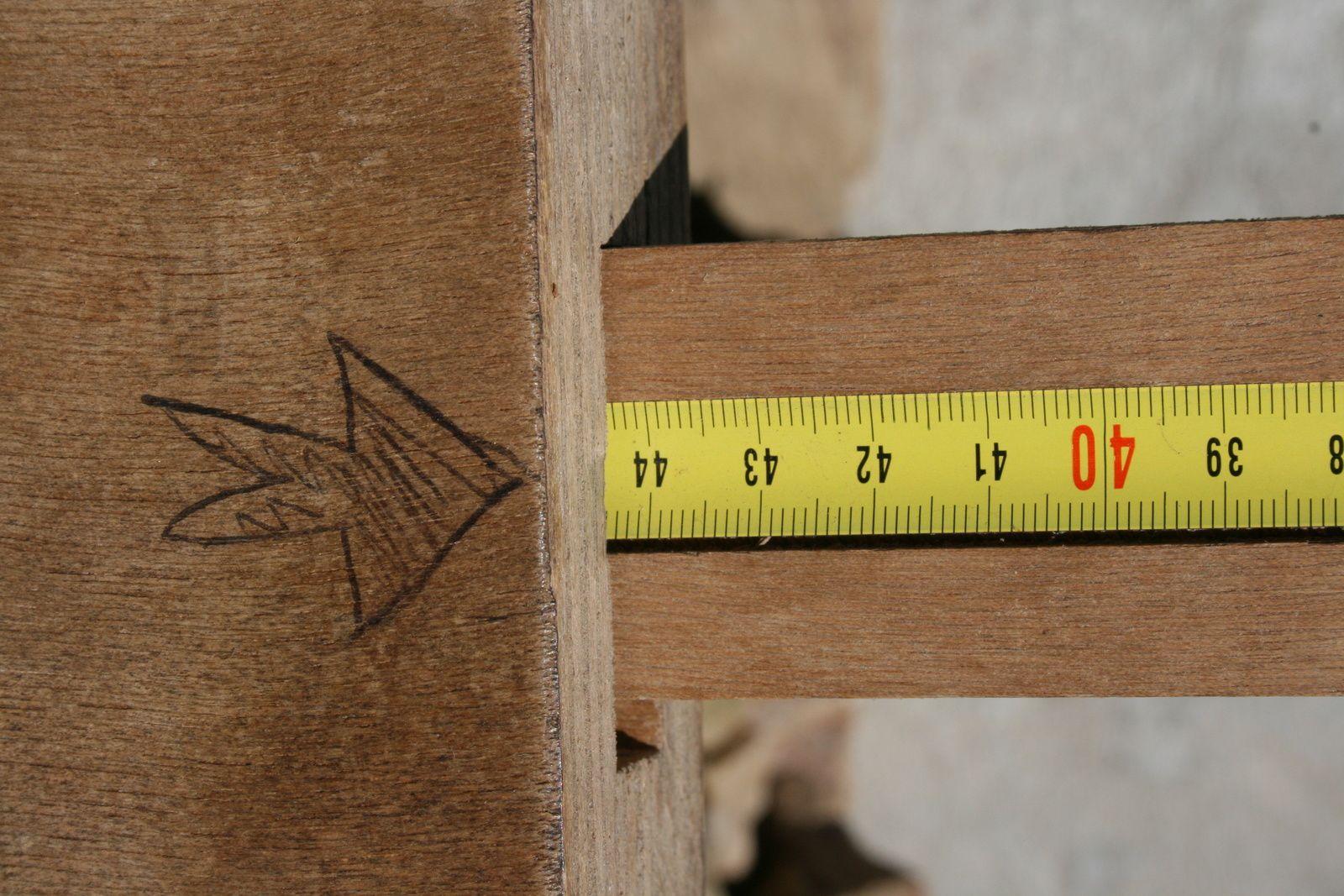 Une bûche qui fait presque 44,5 cm, au garrot!