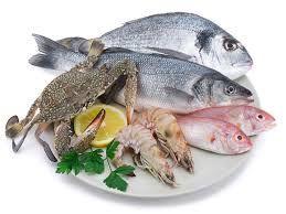 Du poisson Sacrebleu !