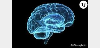 La schizophrénie : un mystère ?