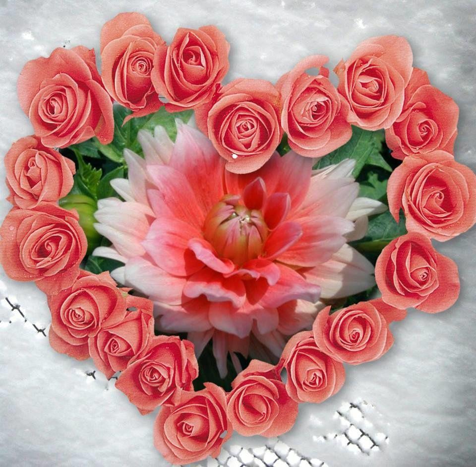 L'amour n'est que le roman du coeur...