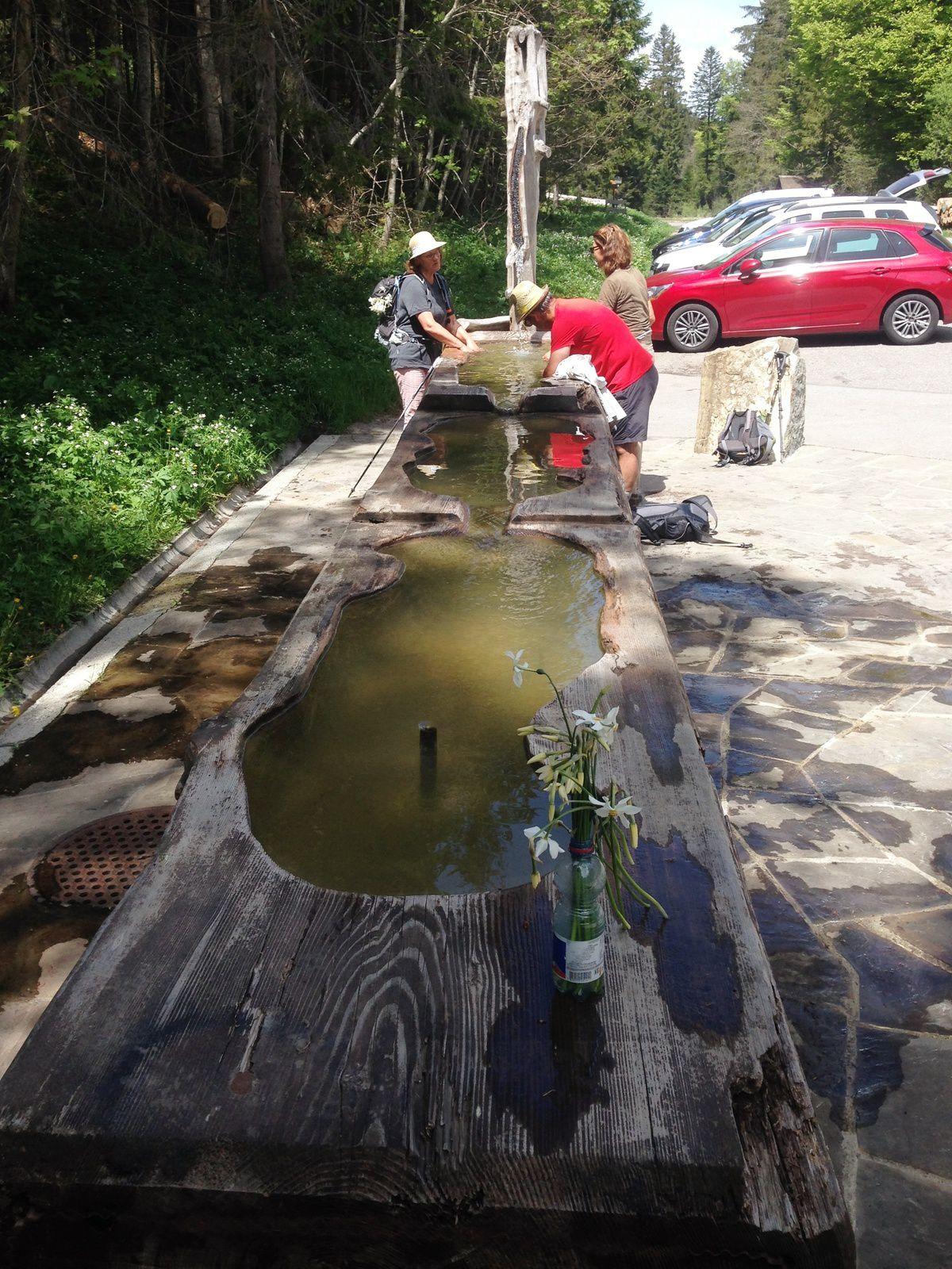 La Fontaine des Pautex
