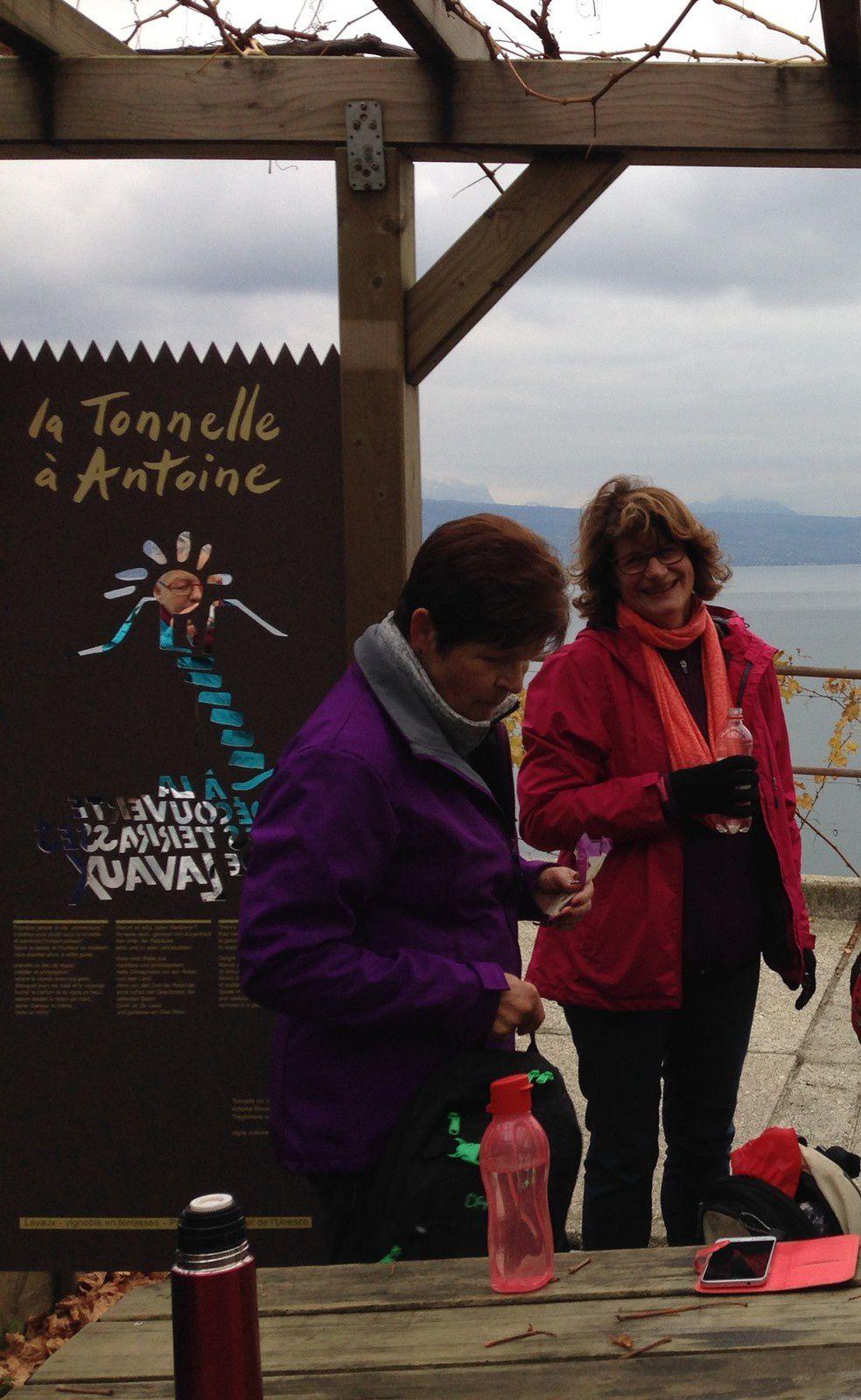 mardi 7 novembre: Le Lavaux au départ de Chexbres  Epesses, Rivaz