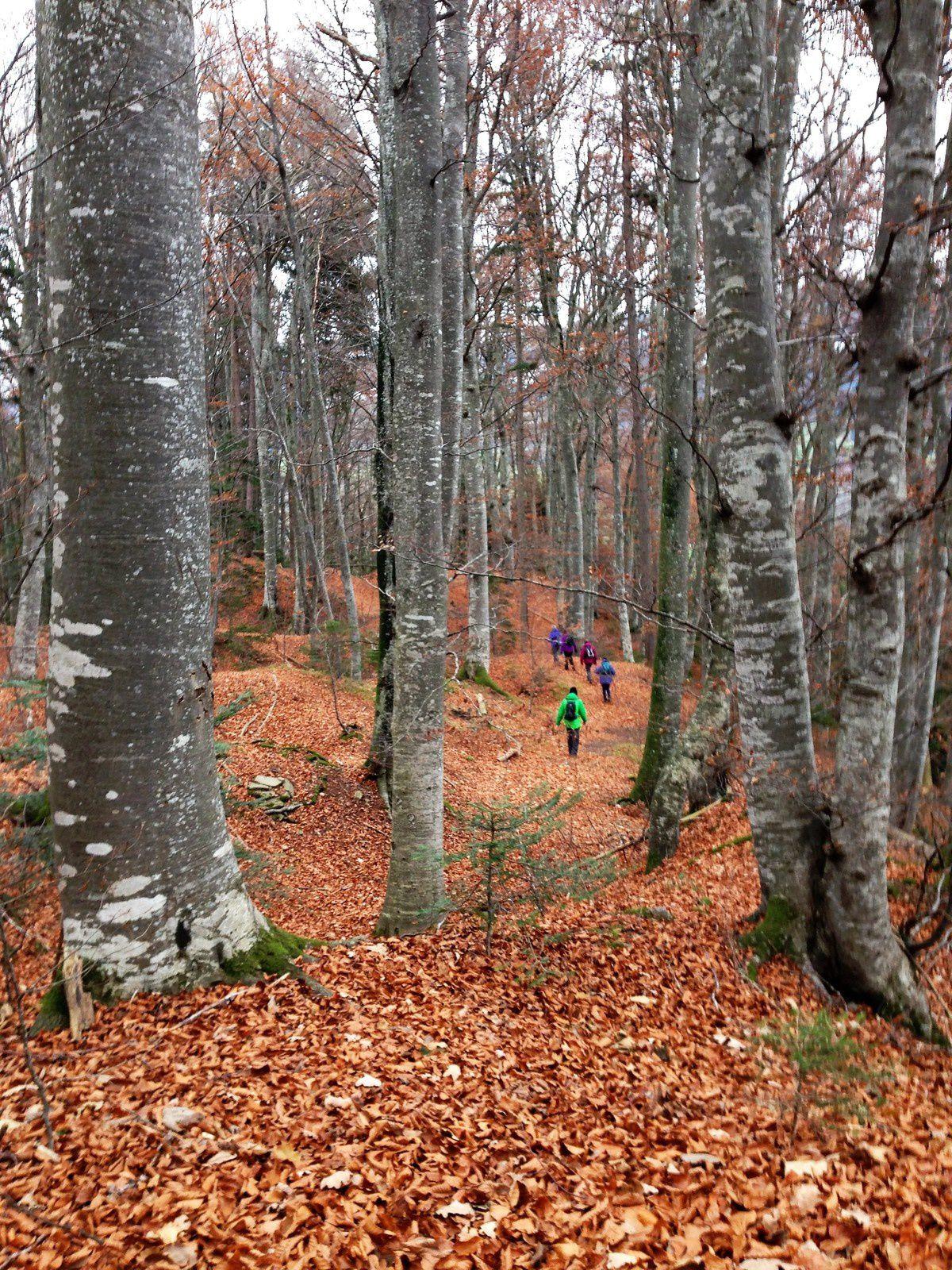 mardi 28 Novembre: le sentier des légendes à Vuippens