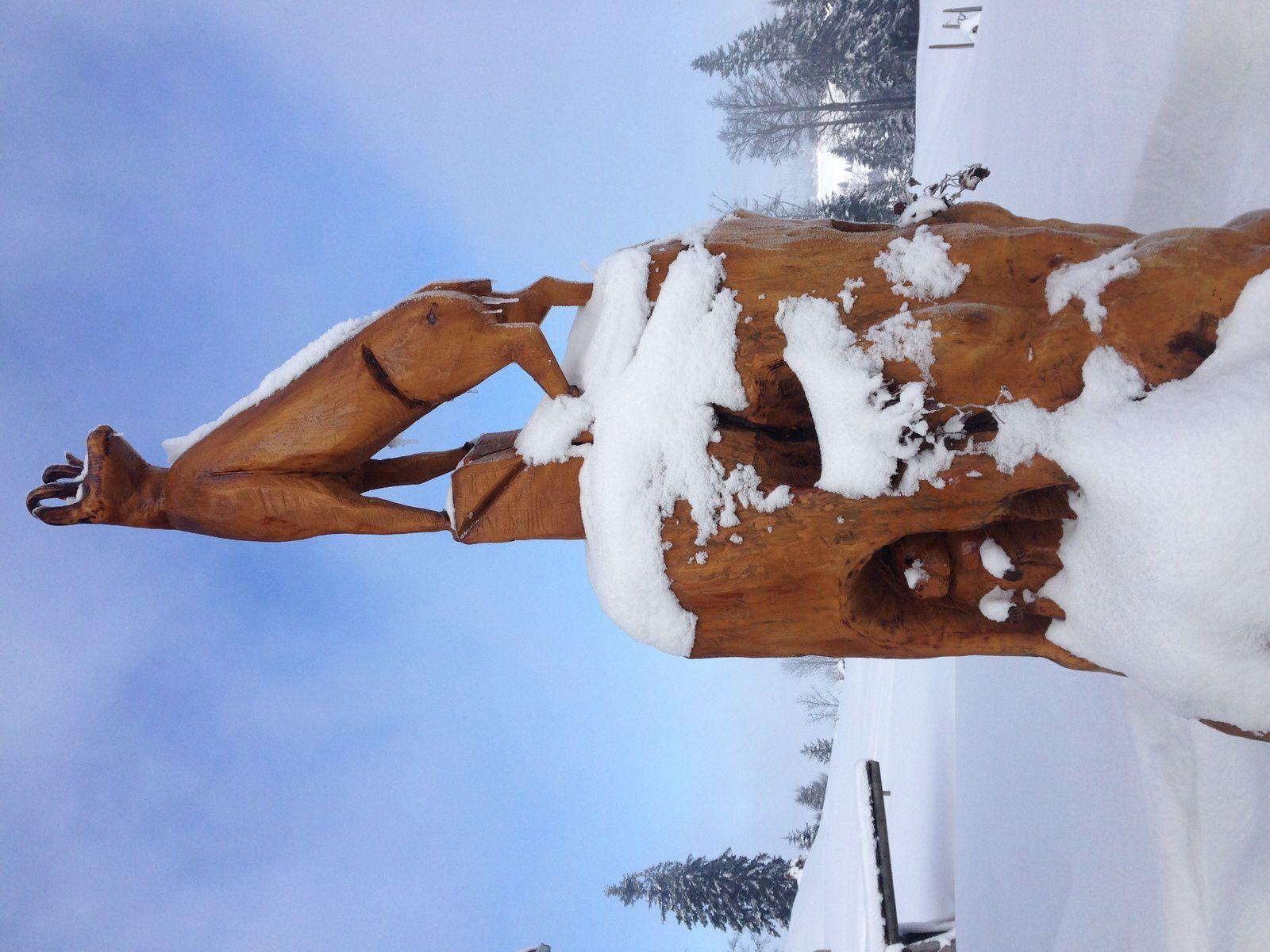 mardi 13 Février: Col des Étroits Mont des cerfs