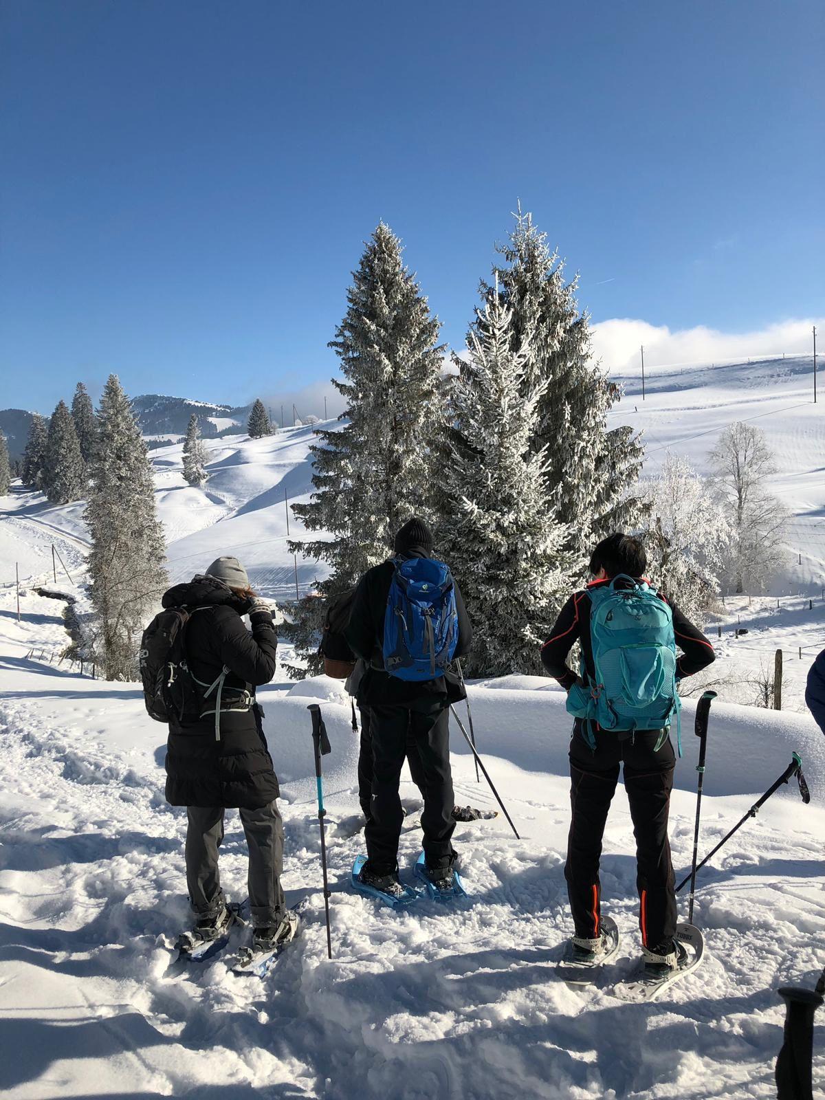 Mardi 22 Janvier: Raquette au Jura Col des Etroits La Vraconnaz L'Auberson col des Etroits