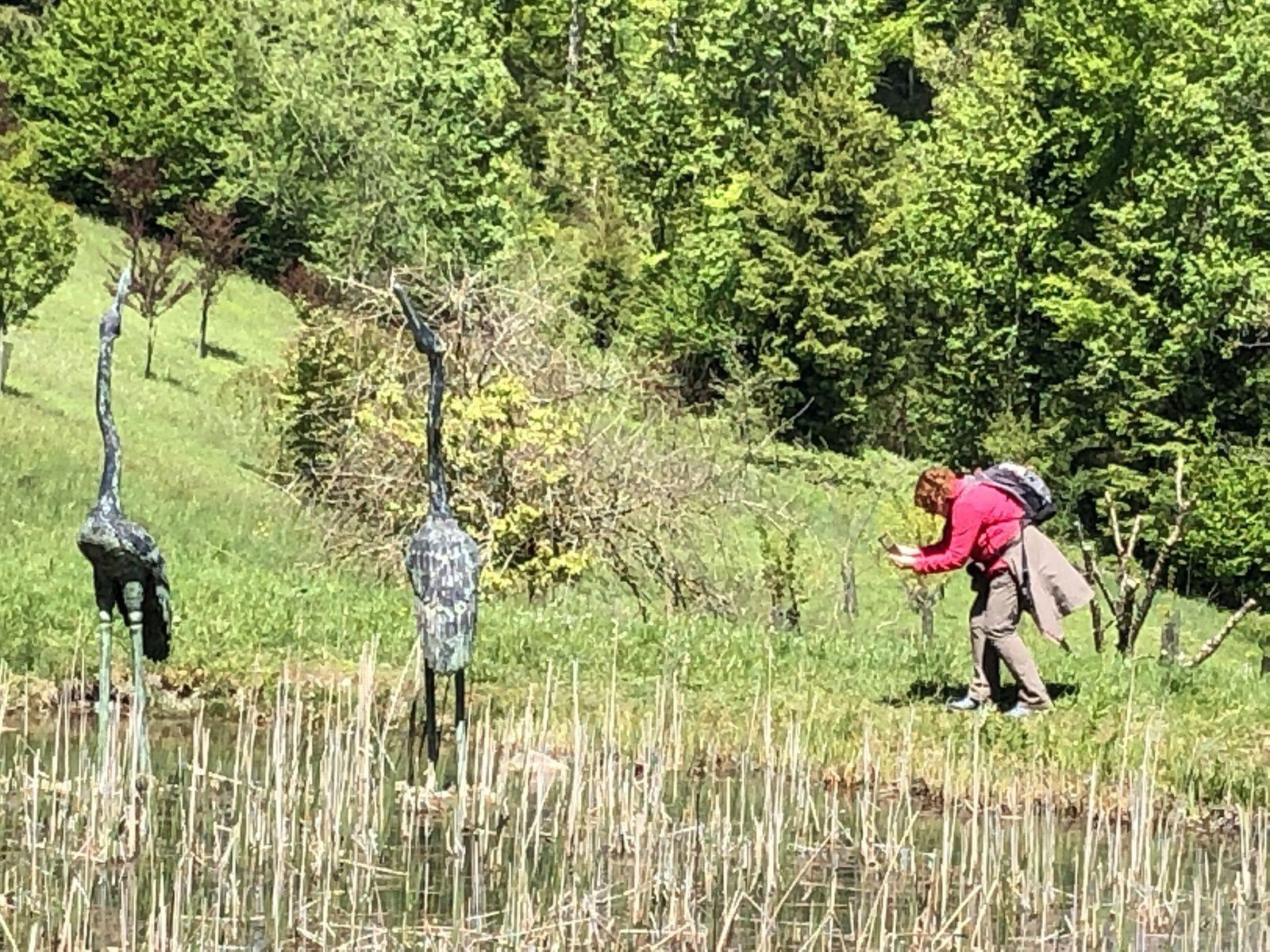 Mardi 14 Mai : Aubonne et Arborétum