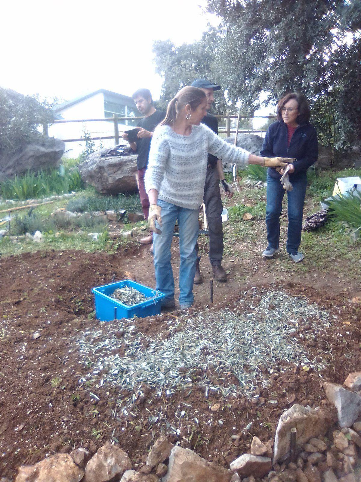 Atelier Permaculture dans le jardin partagé
