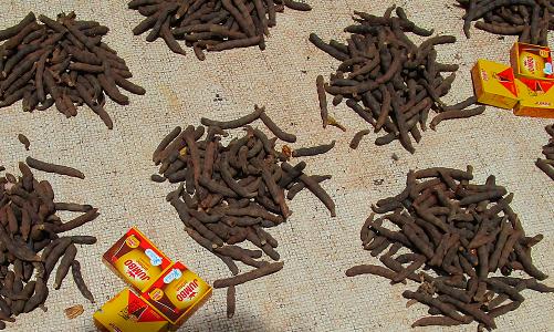 Fruits secs de Xylopia aethiopica - marché villageois en Haute Guinée