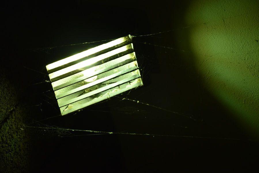 réverbères dans la nuit