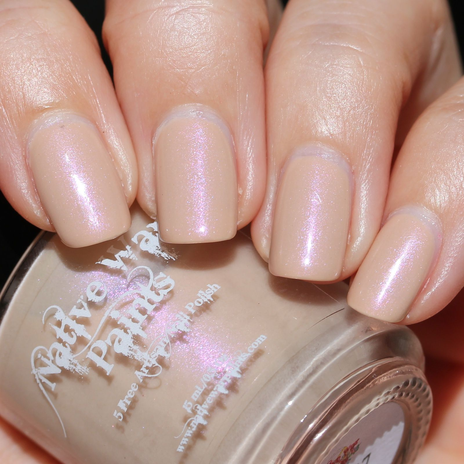 Sally Hansen Complete Care 4-in-1 Extra Moisturizing Nail Treatment / Native War Paints May 2017 / Lilypad Lacquer Crystal Clear Top Coat
