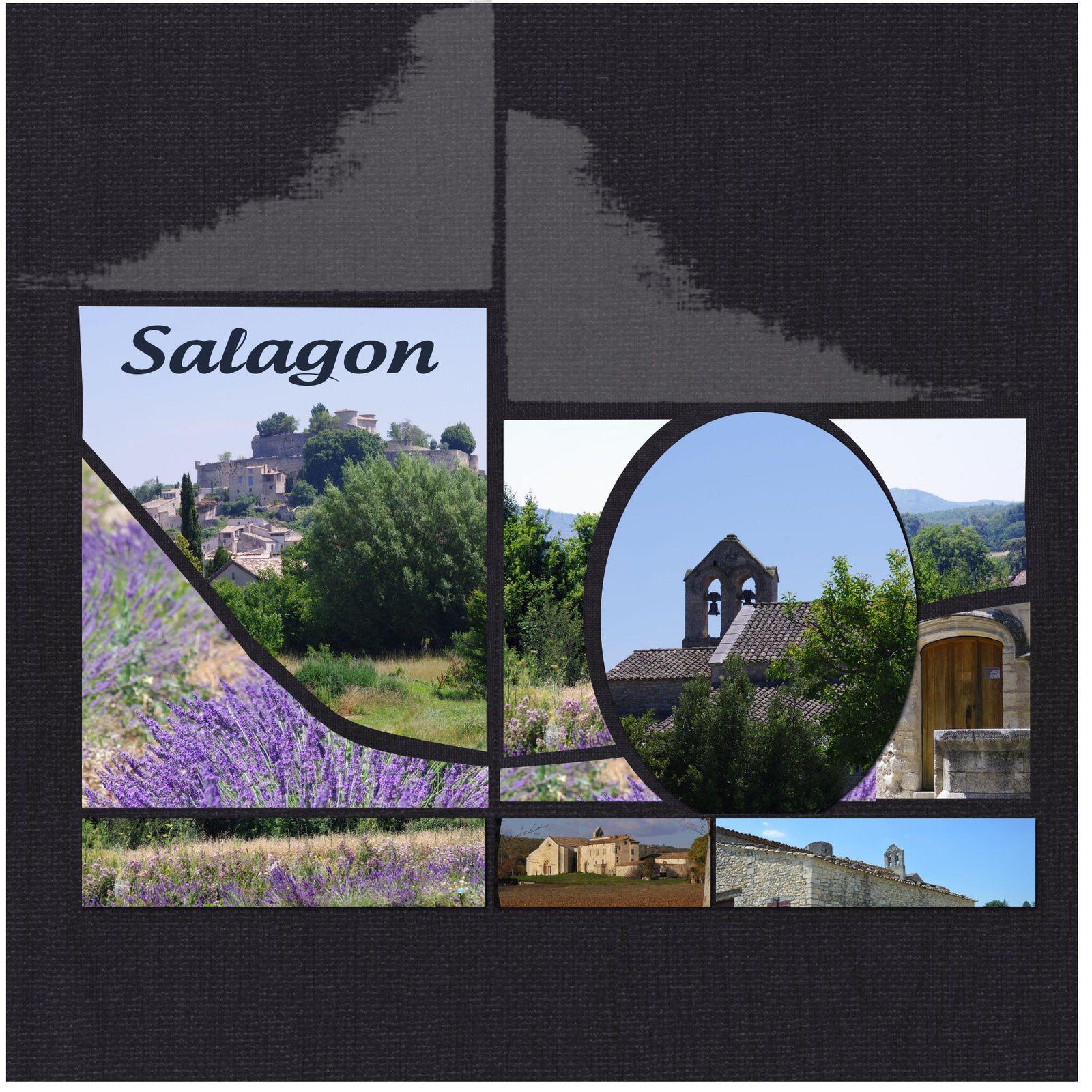Salagon