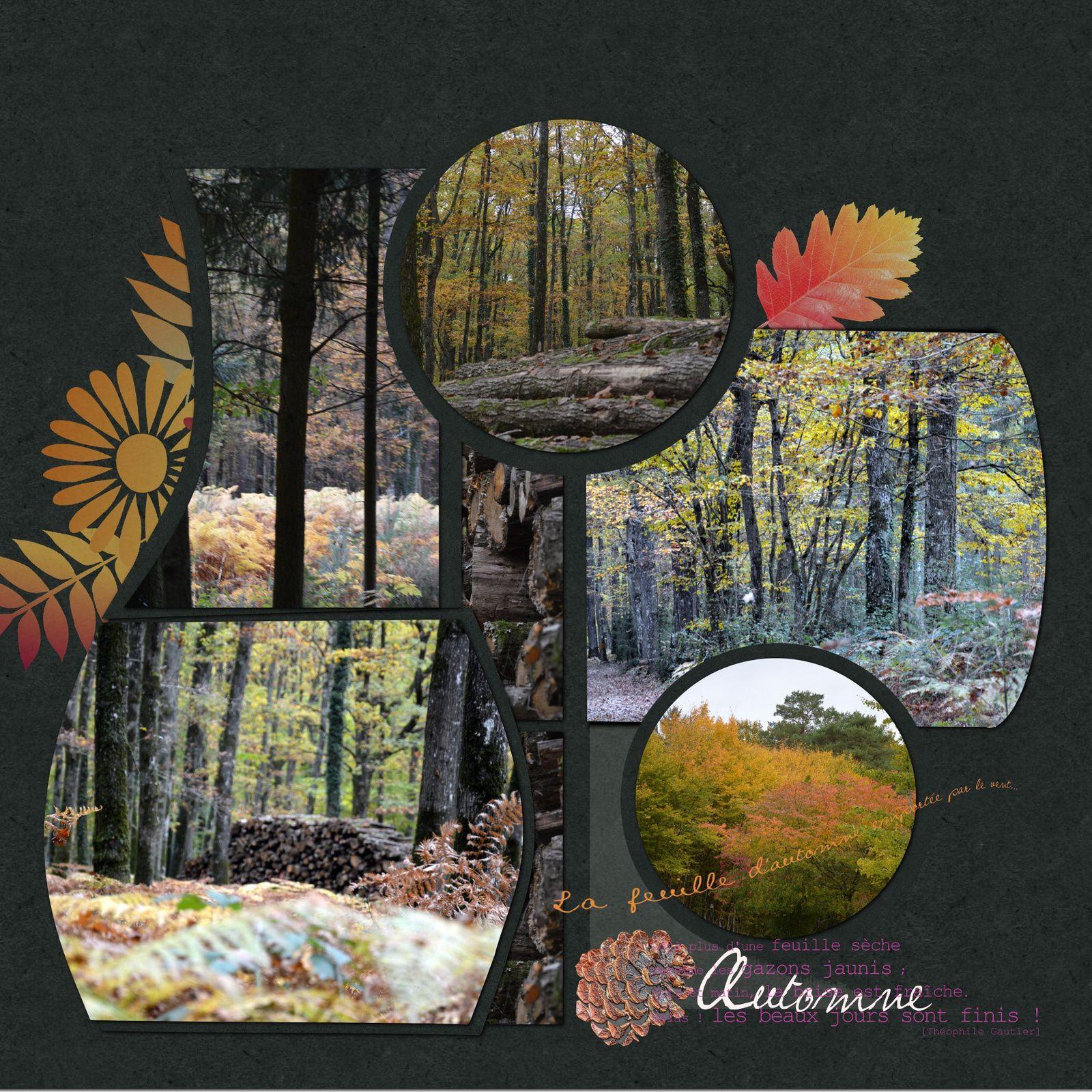 couleurs d'automne - mise à jour
