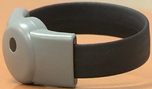 CALAIS : On avait retrouvé son bracelet électronique… autour du cou de son chat ! ( N° 1978 )