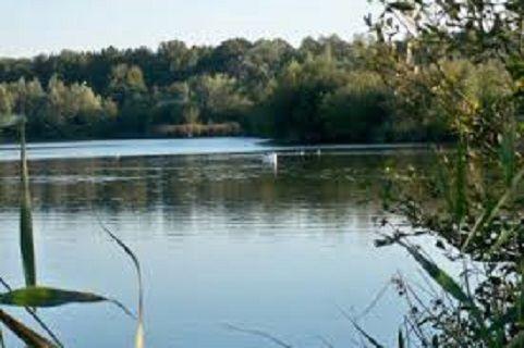 A Saint Amand les Eaux, un étang où il fait bon pêcher