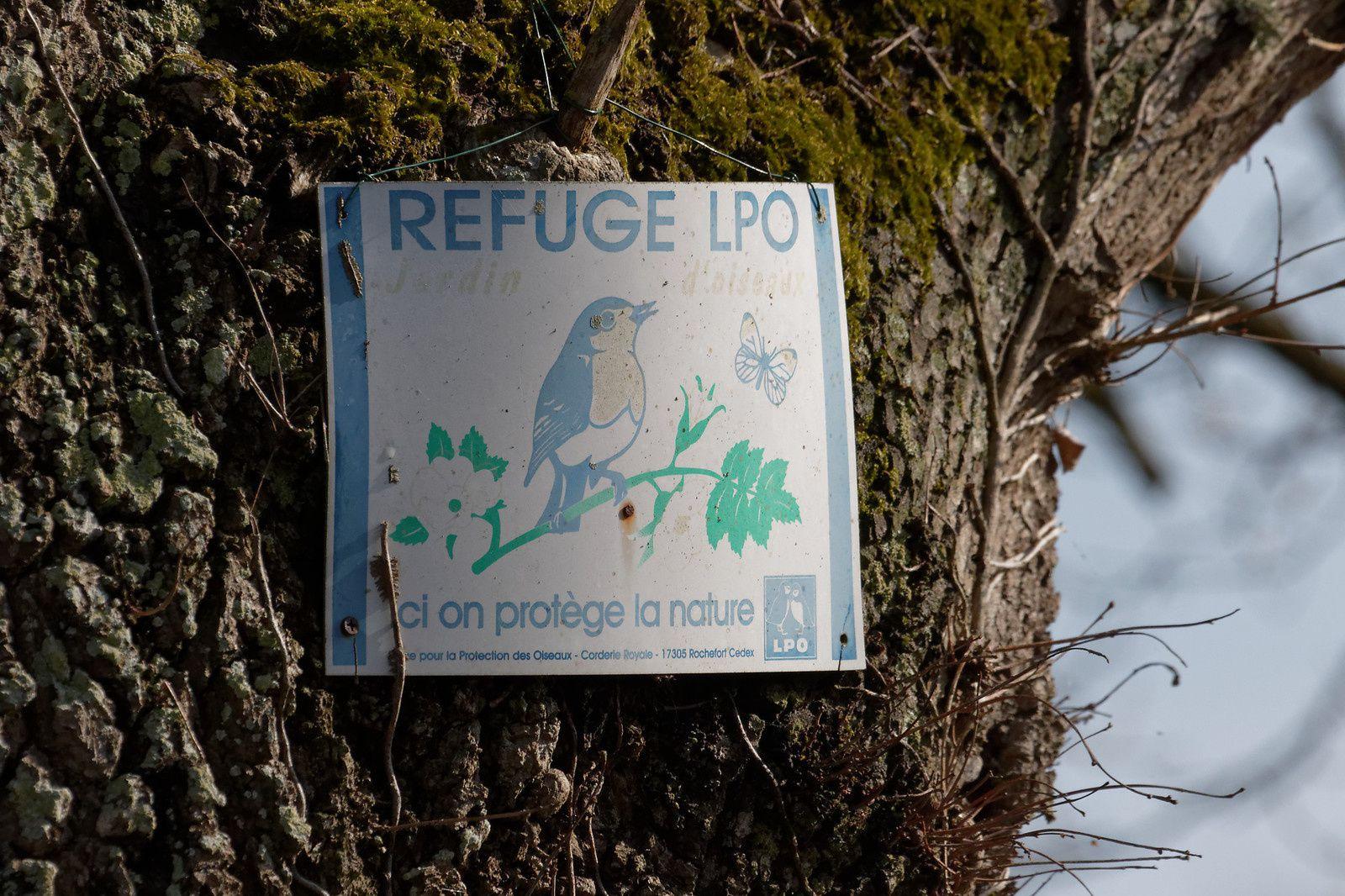 235 - Près d'un refuge LPO dans la Sarthe : 25 26 mars 2016