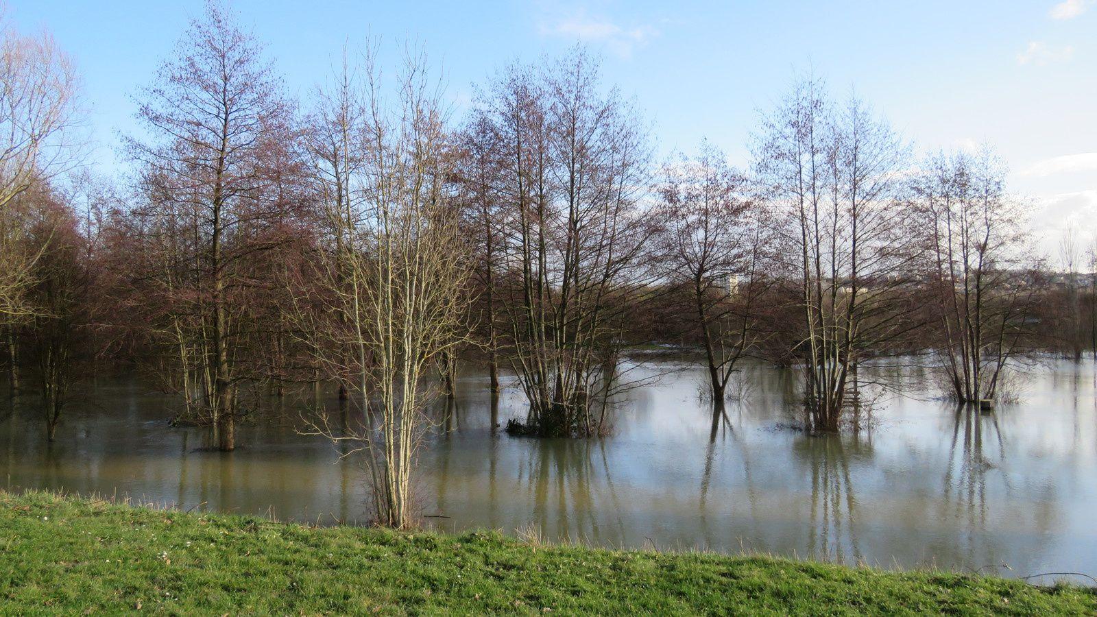 351 - Un parc Natura 2000 inondé, comme les habitations ! : 02/02/2018