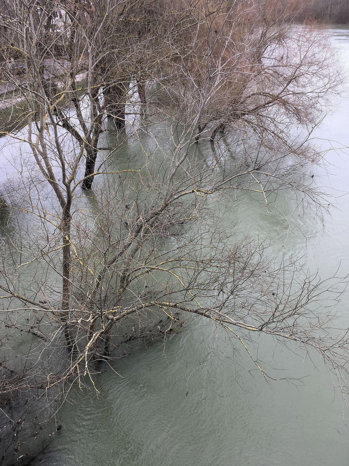 353 - De l'autre côté de la Marne : 11/02/2018