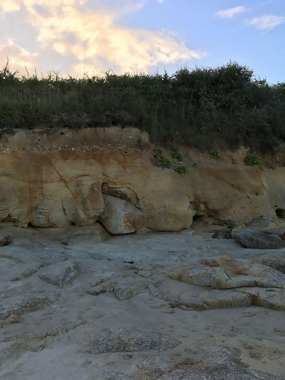 405 - Une plage propre, du sable fin, du soleil et des Hirondelles de rivage : juillet août 2018