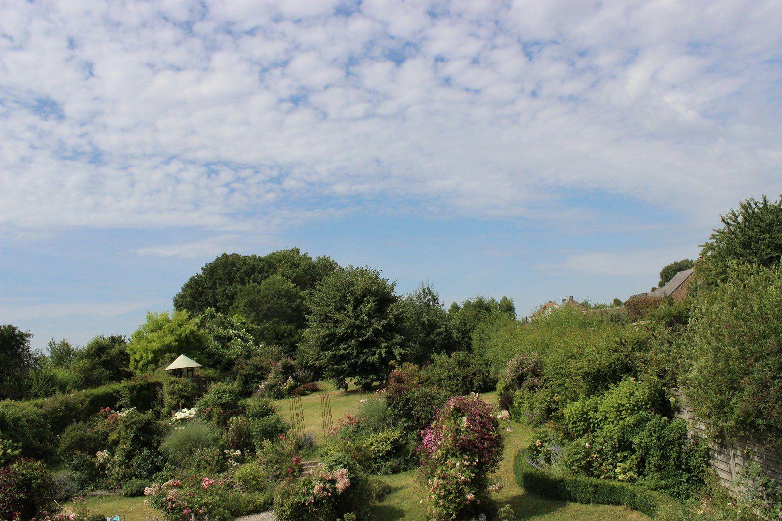 Le jardin coupé de sa partie basse où se trouve le grand tuyau d'arrosage