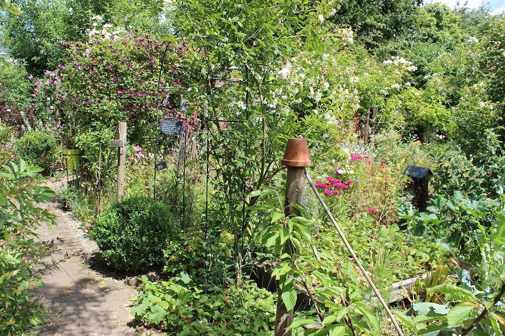 Le jardin du partage (partie 2)